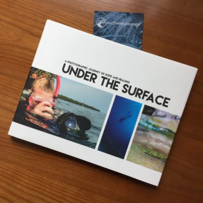 Photo of book cover of Under the Surface