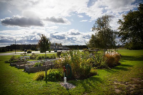 Image of garden in Algoma