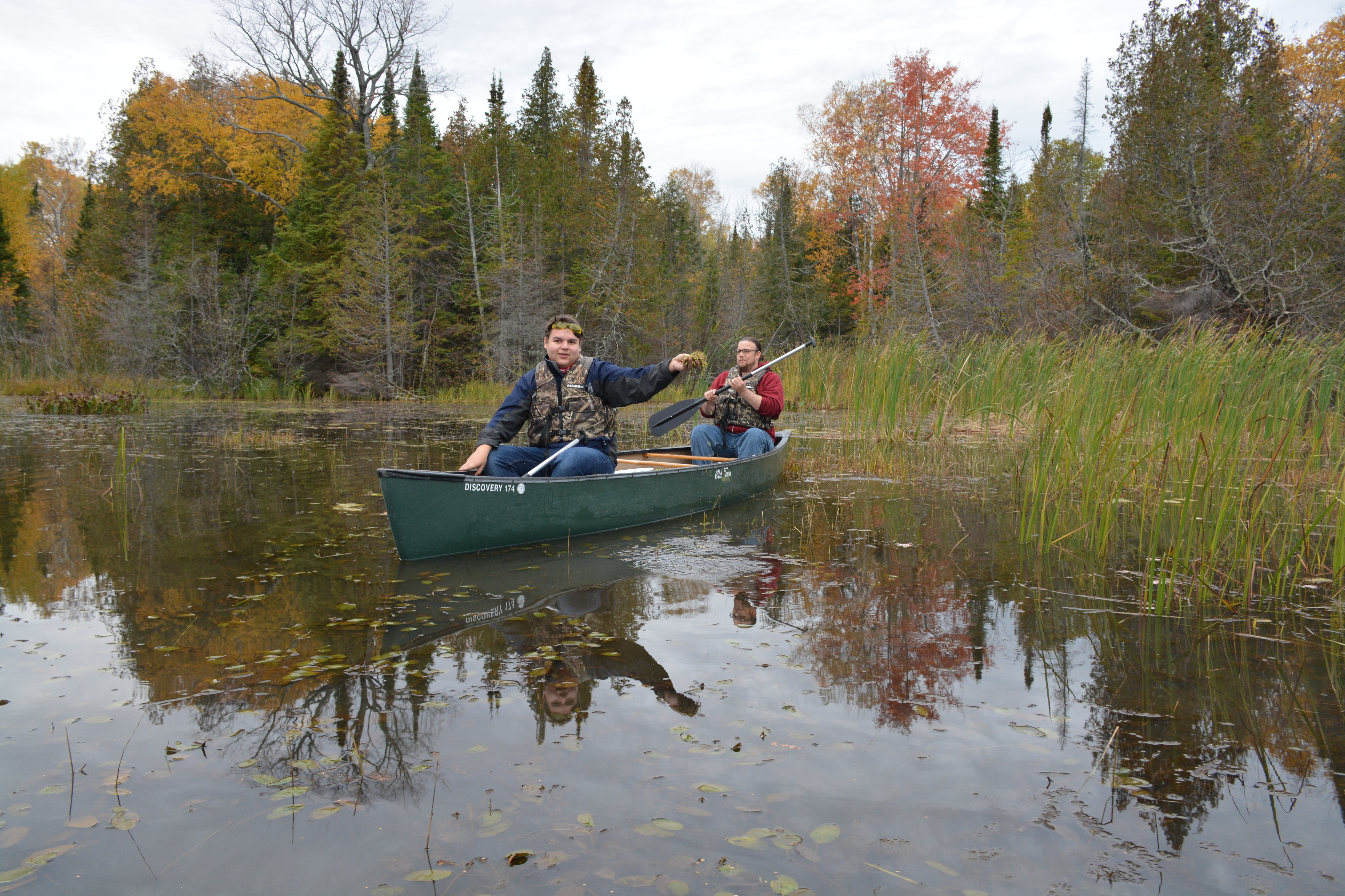 Bayfield High School Alternative Education students worked with Red Cliff tribal members in an effort to place manoomin (wild rice) seed in the Raspberry River, a Lake Superior tributary. (Image courtesy of Rick Erickson/Bayfield High School)